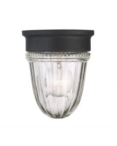 Exterior Collections Jelly Jar Flush Mount